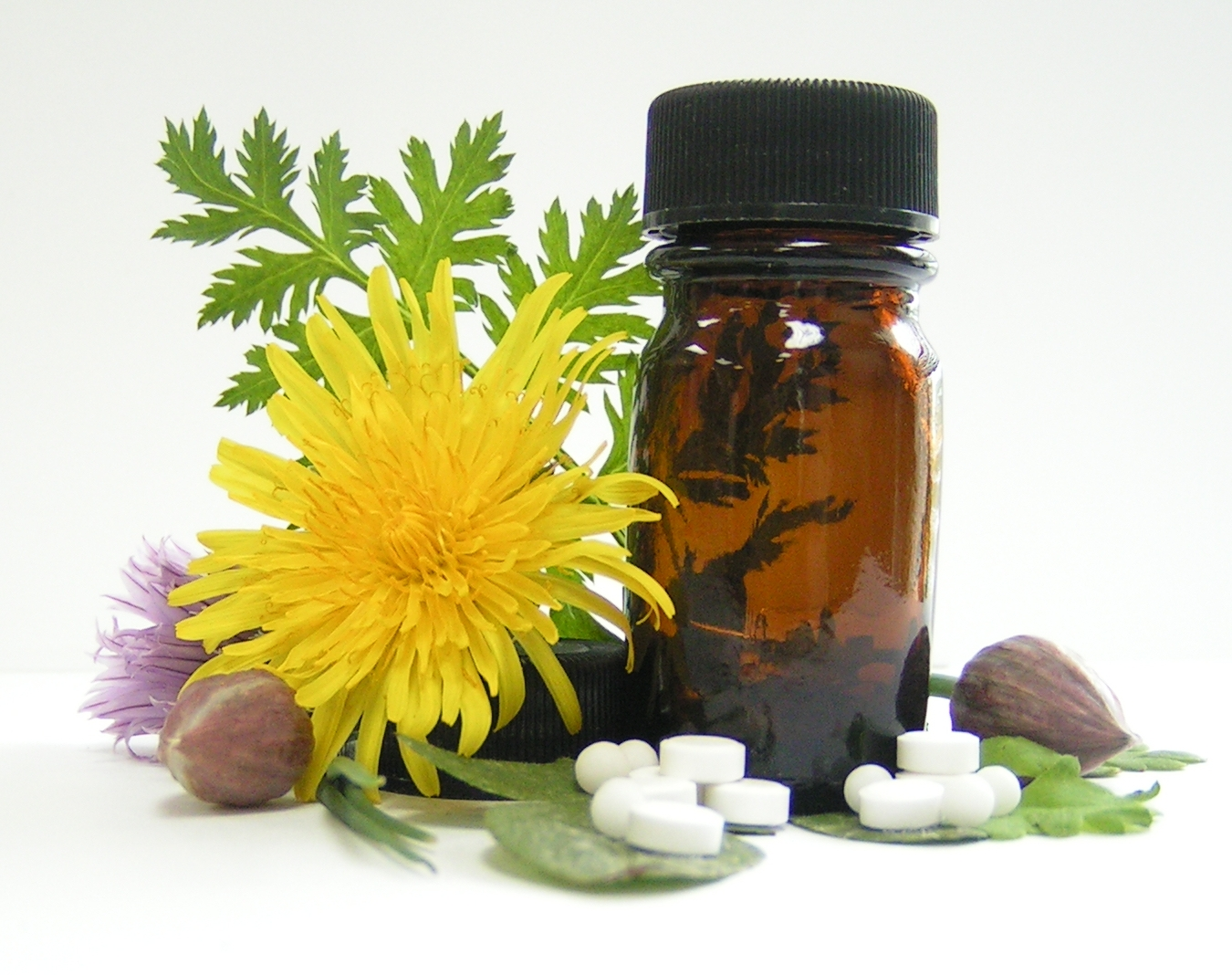 homeopathic medicine list with symptoms pdf