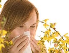 Allergic Rhinitis Surgery