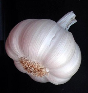 Garlic For Treating Sinus Infection